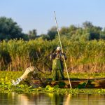 old-fisherman-gathering-nets-danube-delta-romania-traditional-fishing-159157942