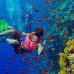 snorkeling-in-mnemba-atoll-in-zanzibar_437733